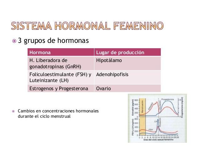 Fisiología femenina antes del embarazo y hormonas femeninas