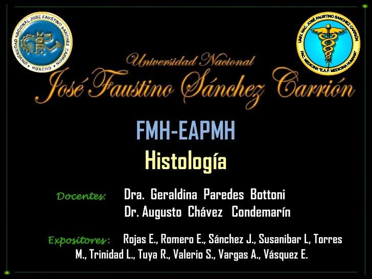 """UNIV. NAC. JOSÉ FAUSTINO SANCHEZ CARRIÓN<br />FAC. MEDICINA """"E.A.P. MEDICINA HUMANA""""<br />FMH-EAPMH<br />Histología<br />D..."""