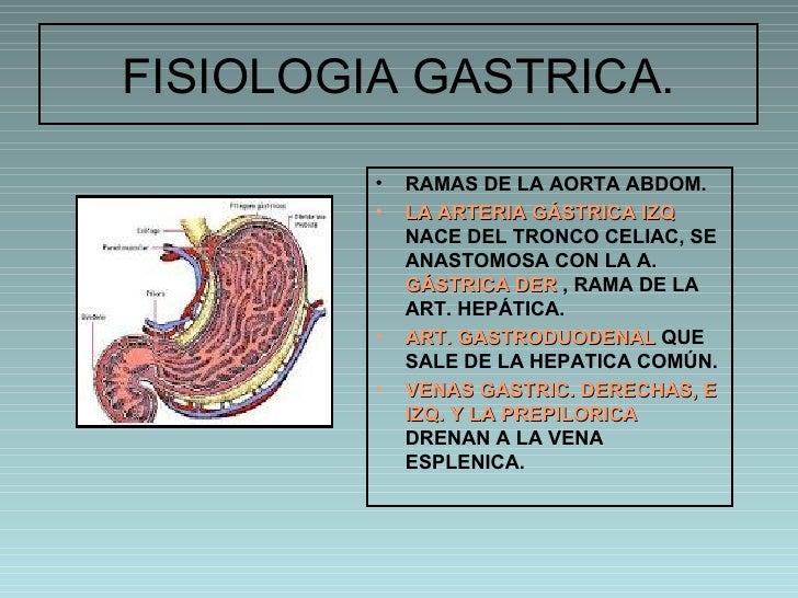 Fisiologia gastrica 1
