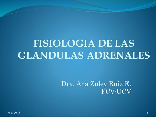 FISIOLOGIA DE LAS GLANDULAS ADRENALES Dra. Ana Zuley Ruiz E. FCV-UCV 30-01-2015 1