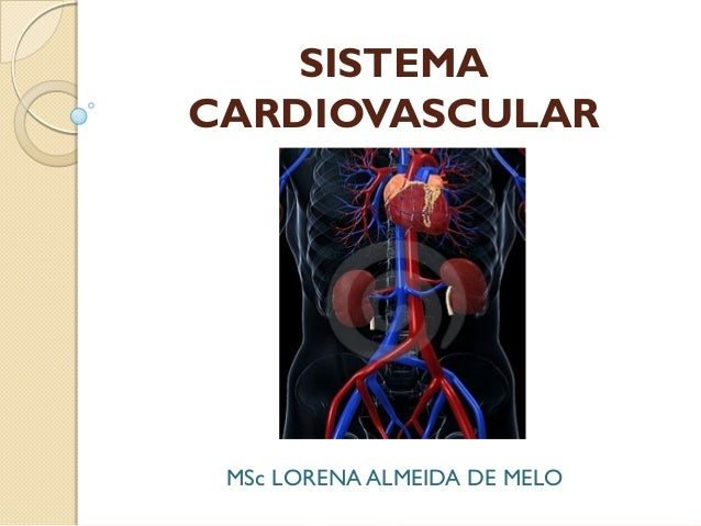 SISTEMA CARDIOVASCULAR  MSc LORENA ALMEIDA DE MELO