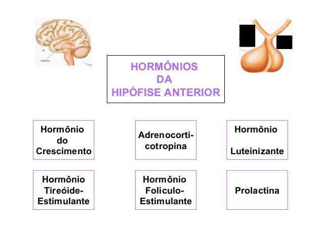 HORMÔNIOS DA HIPÓFISE ANTERIOR  Hormônio do Crescimento  Adrenocorticotropina  Hormônio TireóideEstimulante  Hormônio Folí...