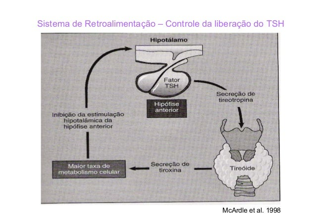 Efeitos Fisiológicos de Hormônios Tireoidianos Aumento do metabolismo basal do corpo; ↑ a síntese protéica ↔ ↑ síntese de ...