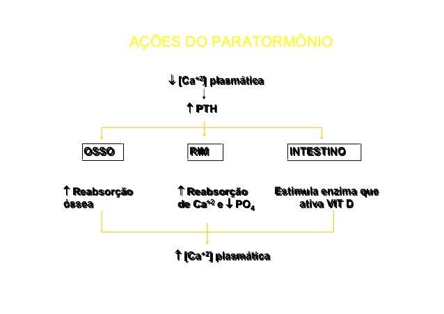 Hormônios Gonadotrópicos Hormônios folículo estimulante (FSH) e hormônio luteinizante (LH) – hipófise anterior - GnRH; FSH...