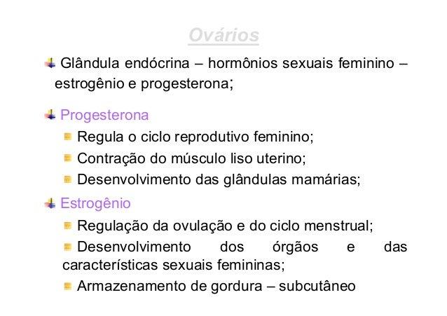 Tamanho Muscular  Produção De Espermatozóide  Gordura Corporal  Testículos testosterona Aumento do N◦ hemácias  Caracterís...