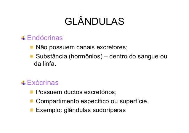 GLÂNDULAS Endócrinas Não possuem canais excretores; Substância (hormônios) – dentro do sangue ou da linfa.  Exócrinas Poss...