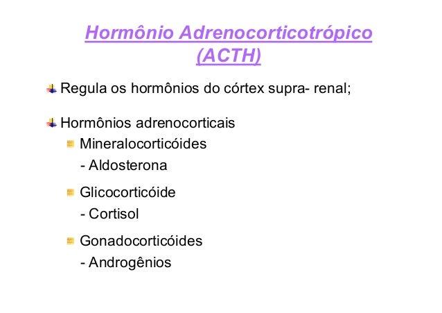 Hormônio Adrenocorticotrópico Aldosterona Produzido pelo córtex da supra renal; Equilíbrio eletrolítico dos líquidos extra...
