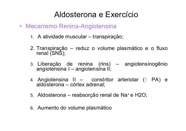 A transpiração reduz o Volume plasmático e o Fluxo sangüíneo renal  M E C A N I S M O  Atividade Muscular transpiração  Re...