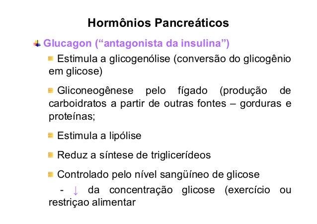 Glucagon e Exercício  Costill et al, 1977