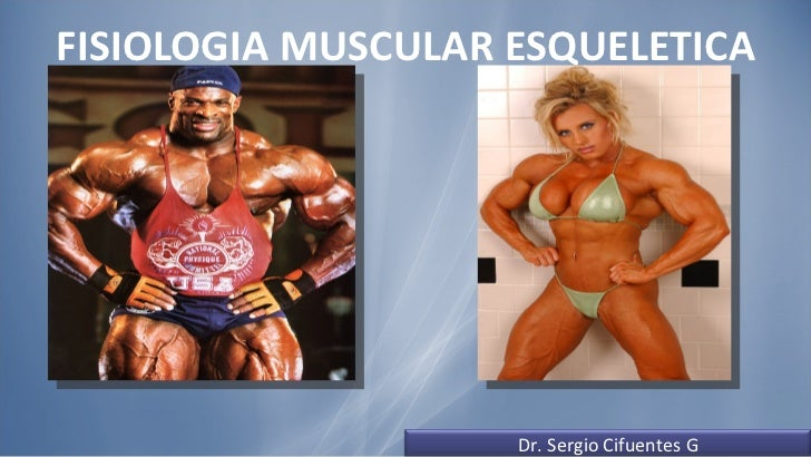 FISIOLOGIA MUSCULAR ESQUELETICA Dr. Sergio Cifuentes G