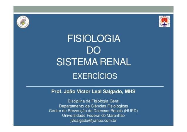 FISIOLOGIA DO SISTEMA RENAL Prof. João Victor Leal Salgado, MHS Disciplina de Fisiologia Geral Departamento de Ciências Fi...