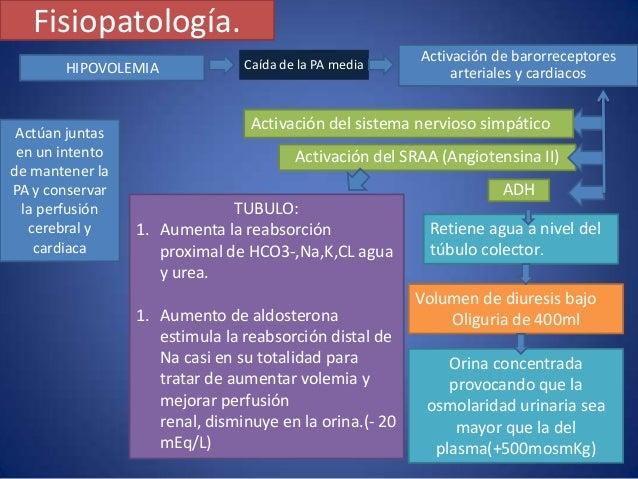 remedios para acido urico colesterol y trigliceridos que no debo comer para el acido urico acido urico alto pies hinchados