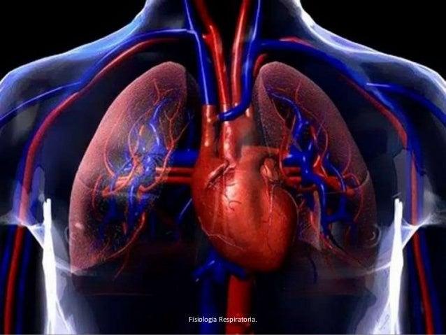 Fisiologia Respiratoria.