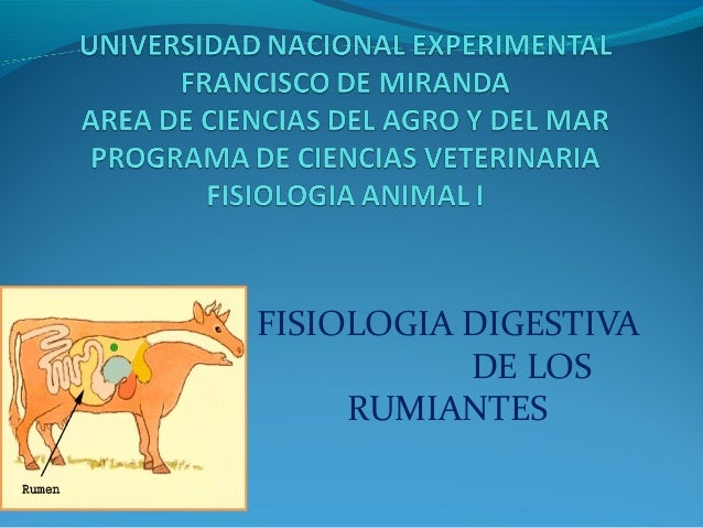 FISIOLOGIA DIGESTIVA DE LOS RUMIANTES