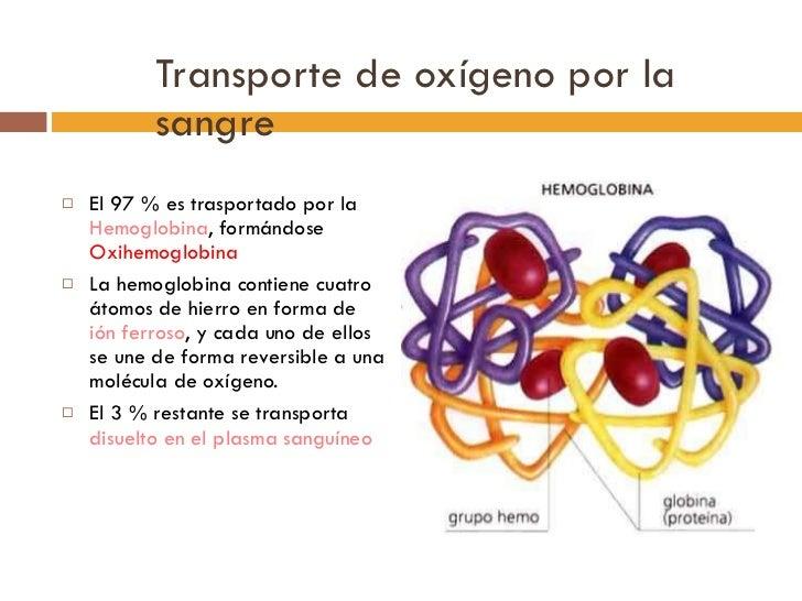 Transporte de oxígeno por la sangre <ul><li>El 97 % es trasportado por la  Hemoglobina , formándose  Oxihemoglobina </li><...