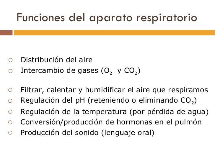 Funciones del aparato respiratorio <ul><ul><li>Filtrar, calentar y humidificar el aire que respiramos </li></ul></ul><ul><...