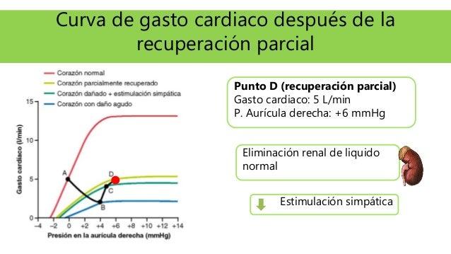 Curva de gasto cardiaco después de la recuperación parcial Punto D (recuperación parcial) Gasto cardiaco: 5 L/min P. Auríc...
