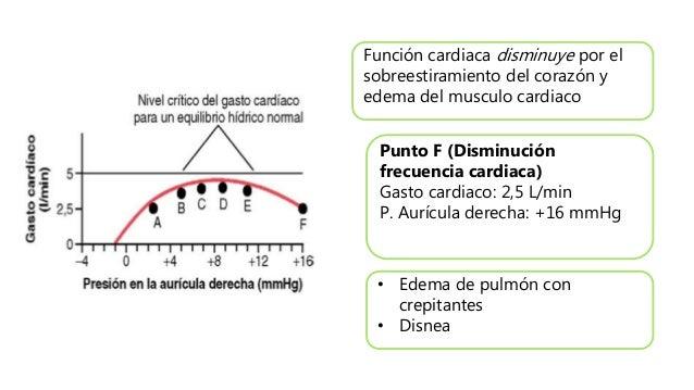 Función cardiaca disminuye por el sobreestiramiento del corazón y edema del musculo cardiaco Punto F (Disminución frecuenc...