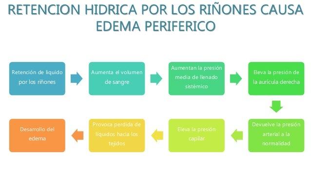 RETENCION HIDRICA POR LOS RIÑONES CAUSA EDEMA PERIFERICO Retención de liquido por los riñones Aumenta el volumen de sangre...