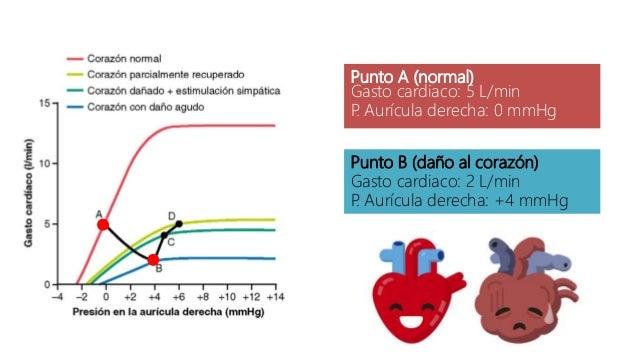 Punto A (normal) Gasto cardiaco: 5 L/min P. Aurícula derecha: 0 mmHg Punto B (daño al corazón) Gasto cardiaco: 2 L/min P. ...
