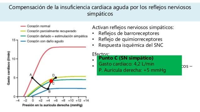 Compensación de la insuficiencia cardiaca aguda por los reflejos nerviosos simpáticos Activan reflejos nerviosos simpático...
