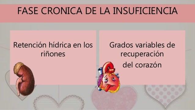 FASE CRONICA DE LA INSUFICIENCIA Retención hídrica en los riñones Grados variables de recuperación del corazón