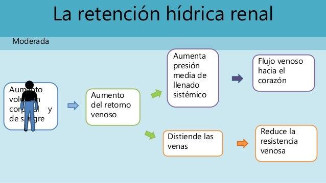 La retención hídrica renal Moderada Aumento volumen corporal y de sangre Aumento del retorno venoso Aumenta presión media ...