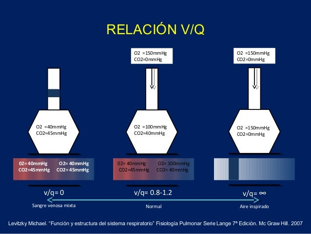 RELACIÓN V/Q02= 40mmHg O2= 40mmHgCO2=45mmHg CO2= 45mmHg02= 40mmHg O2= 100mmHgCO2=45mmHg CO2= 40mmHgO2 =40mmHgCO2=45mmHgO2 ...