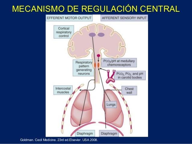 Goldman. Cecil Medicine. 23rd ed.Elsevier. USA 2008.MECANISMO DE REGULACIÓN CENTRAL