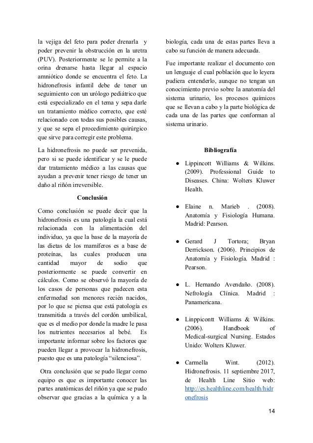 Fisioopatología De la Hidronerosis