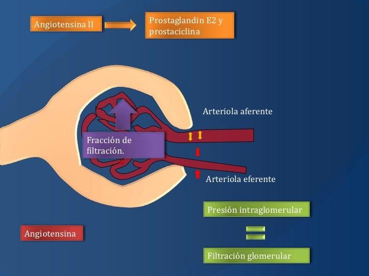 farmacos esteroides+mecanismo de accion