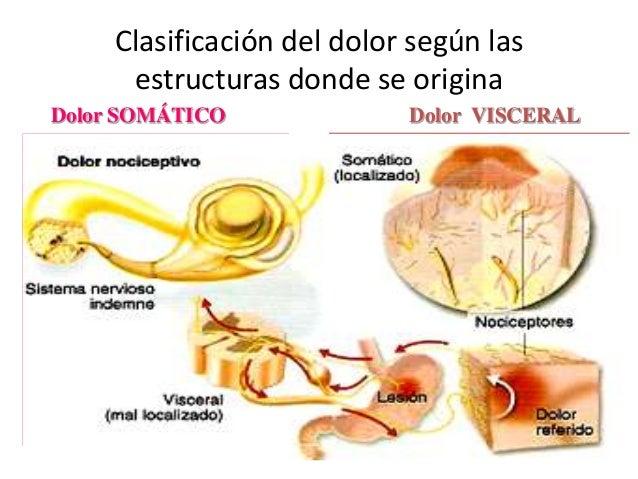 Fisiopatología del dolor gus