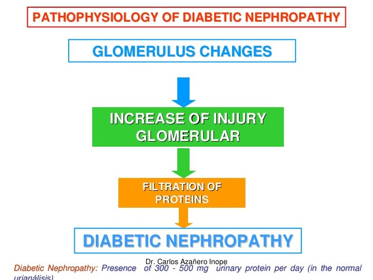 pathophysiology of diabetes nephropathy and atherosclerosis 1 jama 2002 may 15287(19):2570-81 diabetes and atherosclerosis: epidemiology, pathophysiology, and management beckman ja(1), creager ma, libby p.