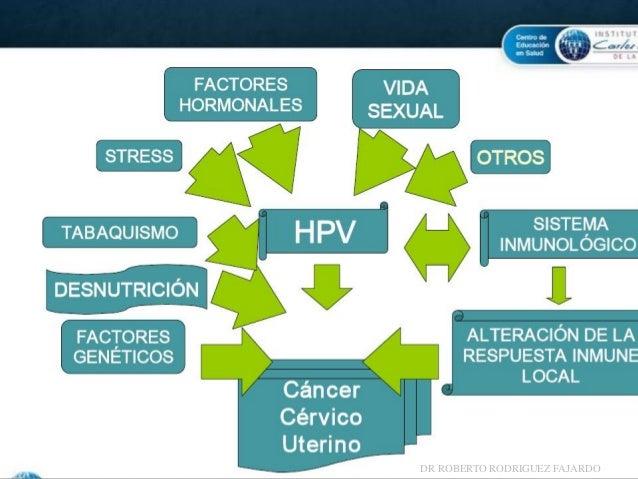 Consenso Eurogin 2006 sobre la prueba de detección de ADN del VPH en el cribado de cáncer de cuello uterino: De la evidenc...