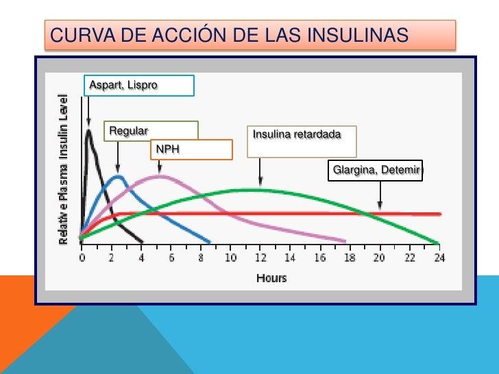 Fisiopatologia Diabetes Mellitus Tipo I