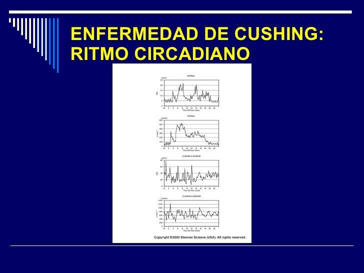 ENFERMEDAD DE CUSHING: RITMO CIRCADIANO