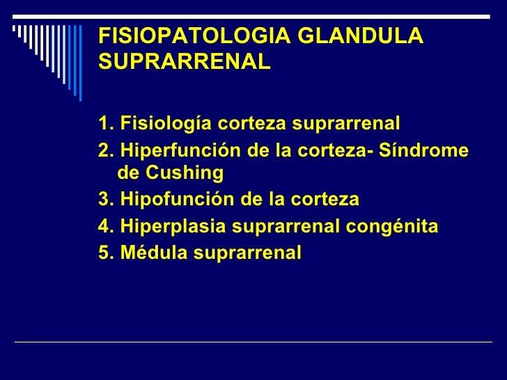 FISIOPATOLOGIA GLANDULA SUPRARRENAL <ul><li>1. Fisiología corteza suprarrenal </li></ul><ul><li>2. Hiperfunción de la cort...