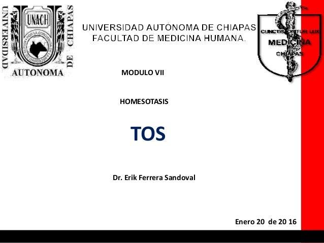 MODULO VII HOMESOTASIS TOS Dr. Erik Ferrera Sandoval Enero 20 de 20 16