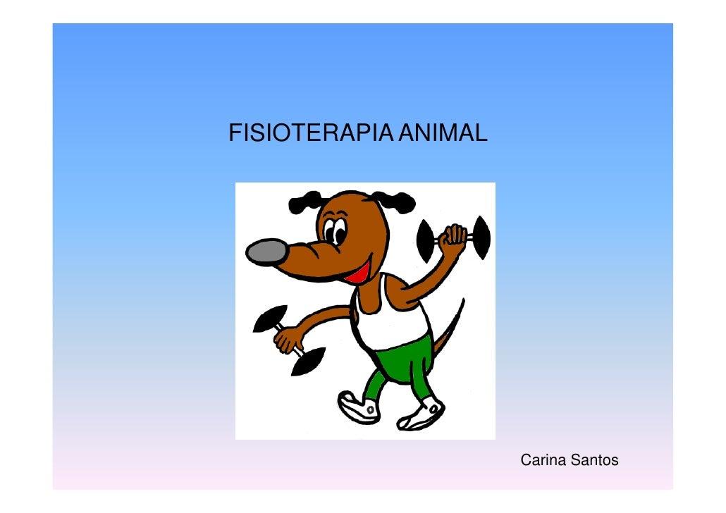 FISIOTERAPIA ANIMAL                           Carina Santos