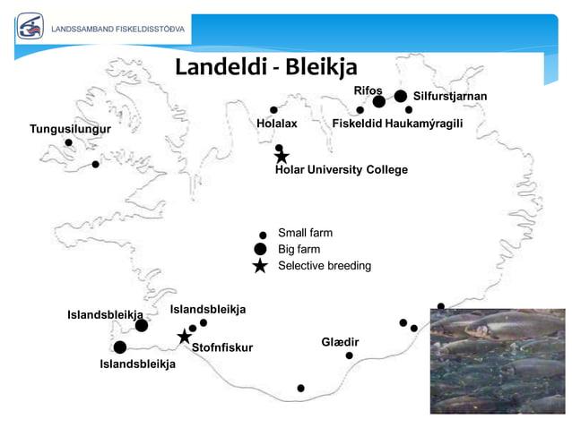 • Aðstæður breytast í N-Atlantshafi • Eldi kaldsjávartegunda færist norðar • Af hverju Ísland? • Ísland sem jaðarsvæði er ...