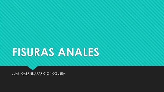 FISURAS ANALES JUAN GABRIEL APARICIO NOGUERA