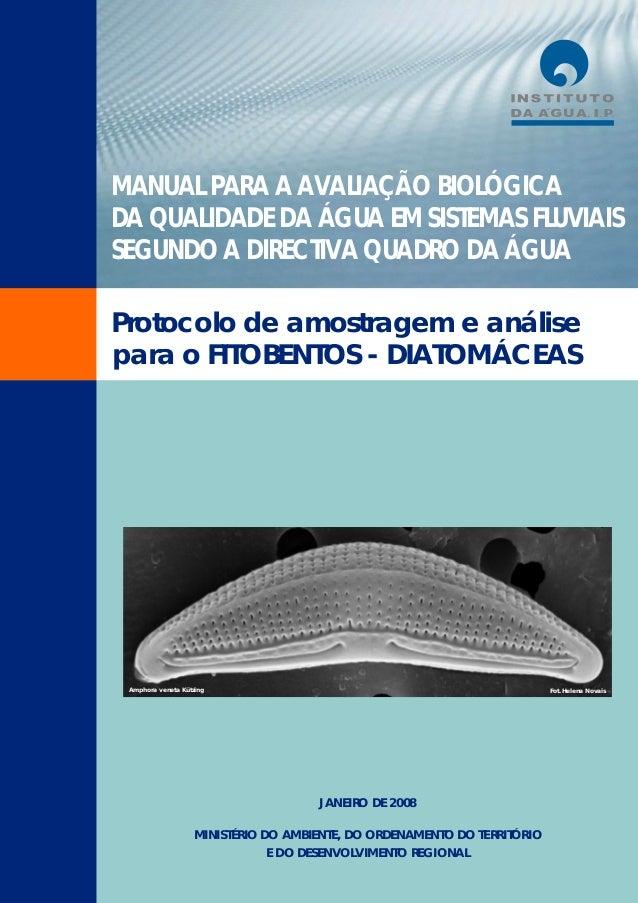 MANUAL PARA A AVALIAÇÃO BIOLÓGICA DA QUALIDADE DA ÁGUA EM SISTEMAS FLUVIAIS SEGUNDO A DIRECTIVA QUADRO DA ÁGUA Protocolo d...