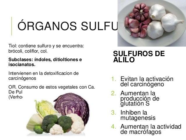 4. IMPORTANCIA DE LOS FITOQUÍMICOS EN LOS ALIMENTOS Cuando son consumidos en una dieta, hay evidencia que indica que los f...