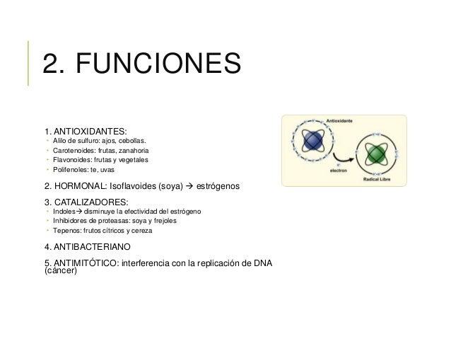 2. FUNCIONES 1. ANTIOXIDANTES:  Alilo de sulfuro: ajos, cebollas.  Carotenoides: frutas, zanahoria  Flavonoides: frutas...