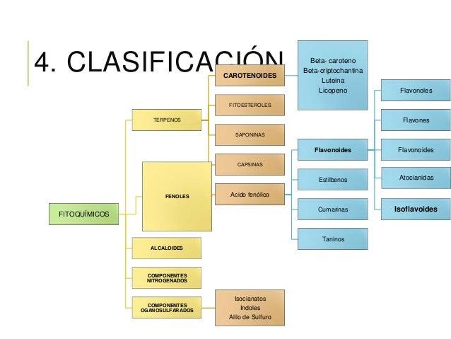 CAROTENOIDES INMUNOLÓGICO EPITELIAL VISIÓN