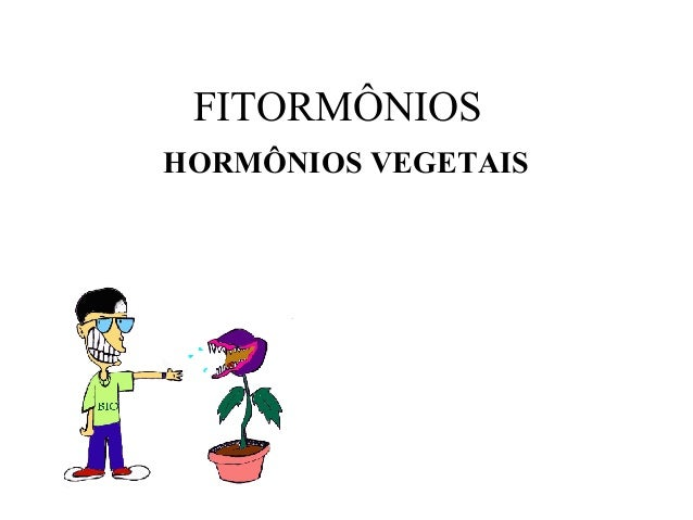 FITORMÔNIOS HORMÔNIOS VEGETAIS