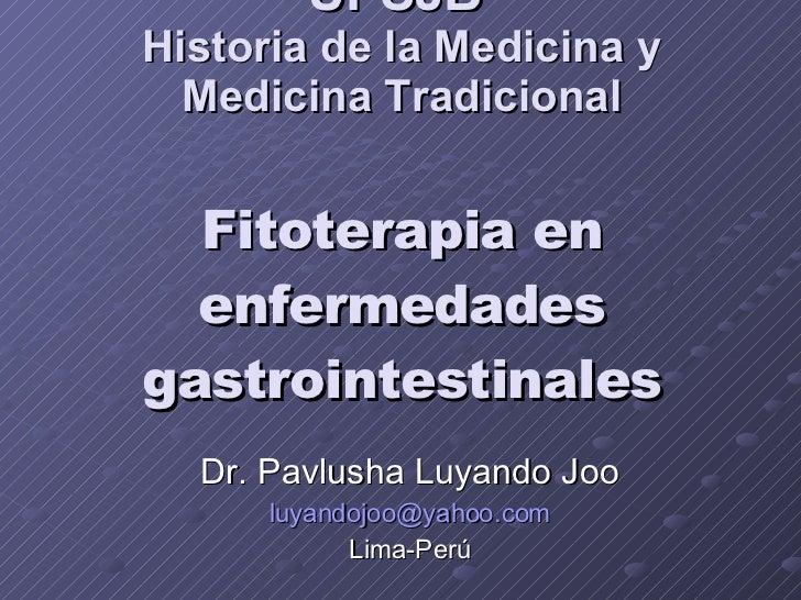 UPSJB  Historia de la Medicina y Medicina Tradicional Fitoterapia en enfermedades gastrointestinales Dr. Pavlusha Luyando ...
