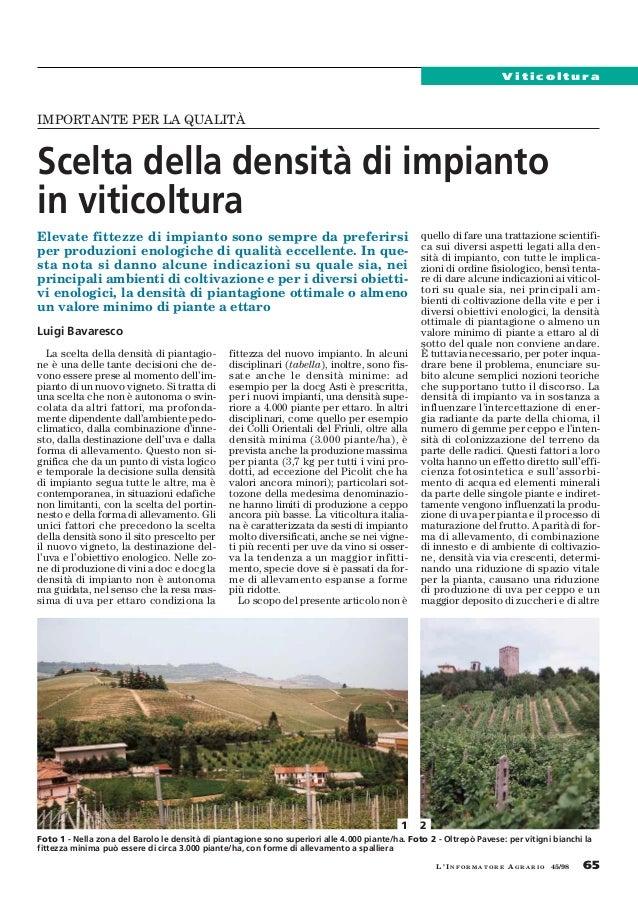 ViticolturaIMPORTANTE PER LA QUALITÀScelta della densità di impiantoin viticolturaElevate fittezze di impianto sono sempre...