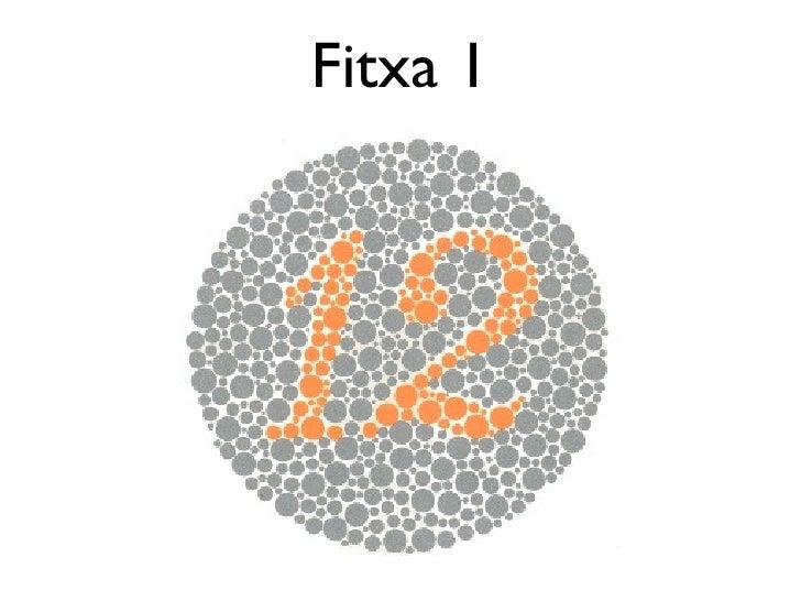 Fitxa 1