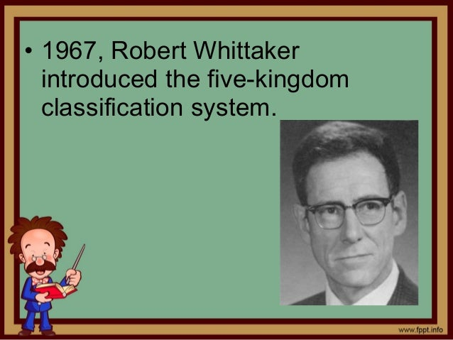 in the five kingdom system of classification